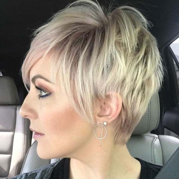 Peachy 101 Beautiful Pixie Bob Ideas That Will Have Heads Turning Sass Schematic Wiring Diagrams Amerangerunnerswayorg